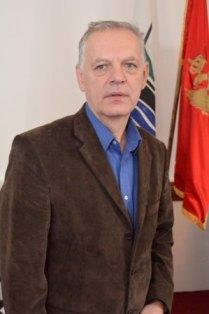 Budimir Dabetic