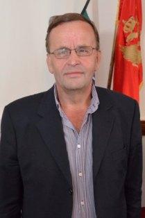 Hafiz Novalic
