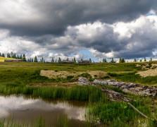 mokra planina (1024x678)