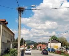 Фото: Рабреновић