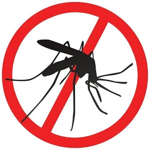 no-mosquito-sign