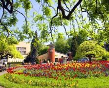 Vrnjacka-Banja-park1
