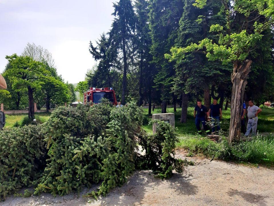 Не користити парк шуму Јасиковац и остале паркове због јаког вјетра