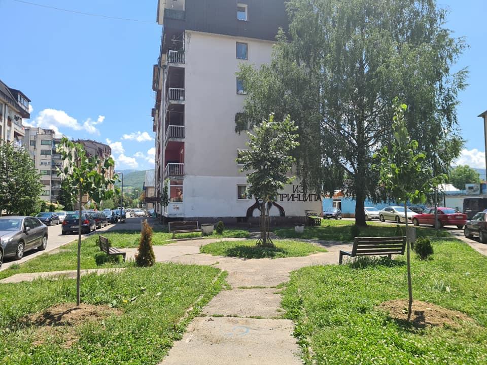 Nove sadnice na javnim površinama u gradu